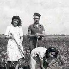 La vie des femmes pendant la 2ème guerre mondiale.