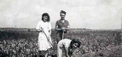 Featured La vie des Femmes pendant la Seconde Guerre Mondiale