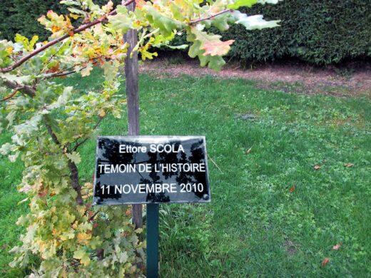 Plantation de l'arbre Ettore Scola , Témoin de la Mémoire