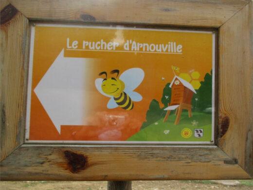 Une petite abeille vous montre le chemin