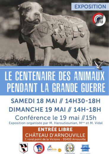 Le centenaire des animaux pendant la grande guerre