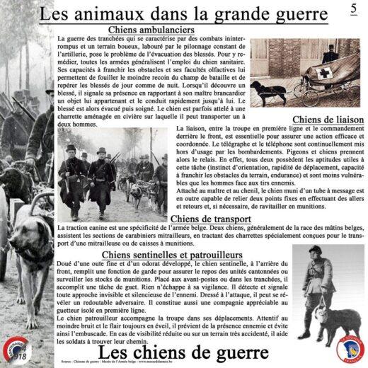 Le rôle des chiens de guerre